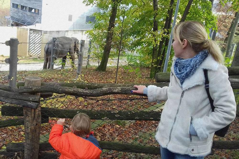 Мы с сыном в пражском зоопарке смотрим на слона