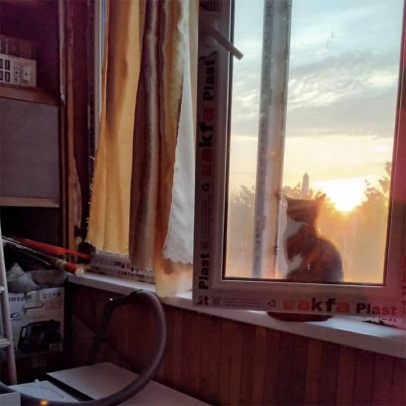 На неделе должны были прийти рабочие и повесить шкафы на кухню, но пока они все еще ждут своего часа на балконе