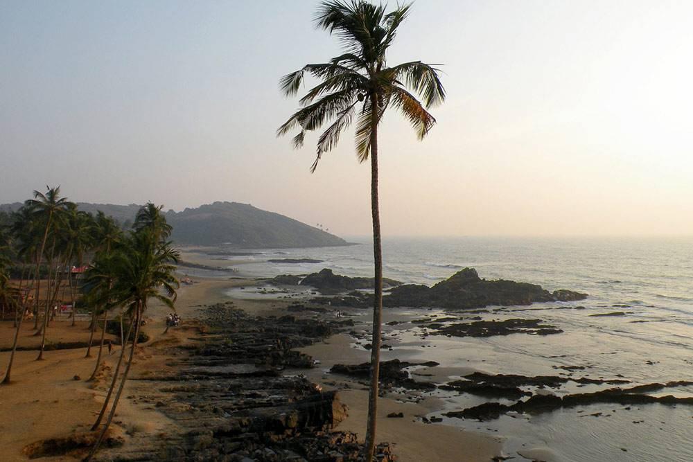 В Гоа я еду купаться в океане и пить местный ром. Фото: Praful Tripathy/Flickr