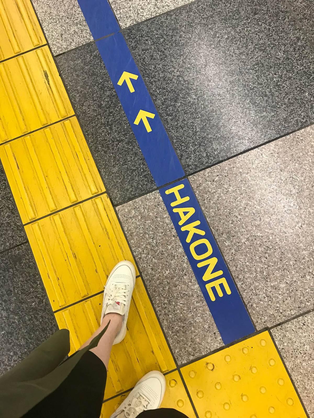 Синяя линия на станции указывает, куда идти туристу, который приехал в Хаконе