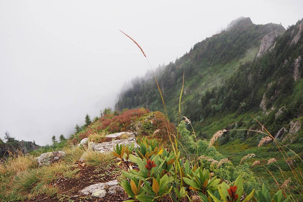 К сожалению, закат мы так и не посмотрели из-за облачности, но виды на плато все равно удивительные