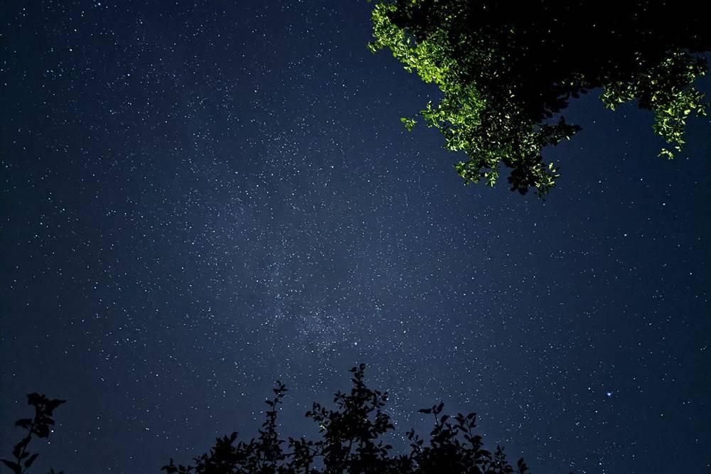 М. присылает красивые фотографии природы, сада и звездного неба