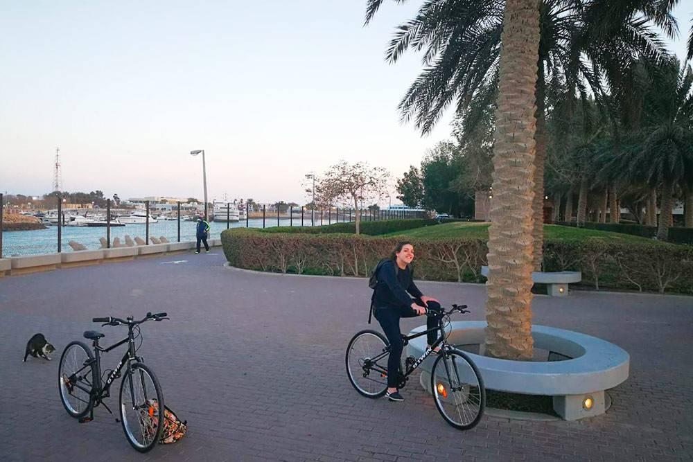 Кататься на велосипеде вдоль набережной — мой любимый вид отдыха