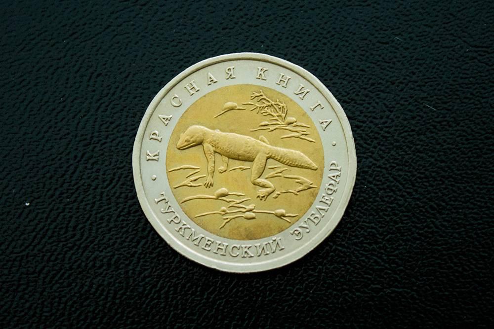 Одна из монет, которую мы приобрели на аукционе, — «Туркменский эублефар». Монета посвящена наземному геккону, эндемику Туркмении и Ирана — то есть виду, который встречается только там