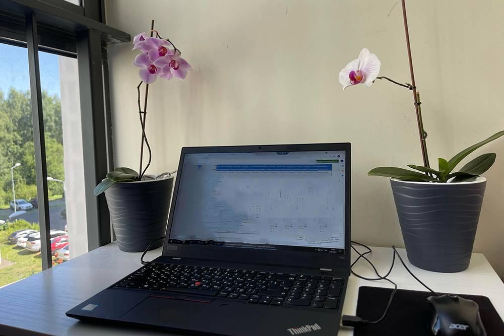 Когда на улице стало тепло, мы вынесли мое рабочее место на балкон, теперь тут маленький кабинет