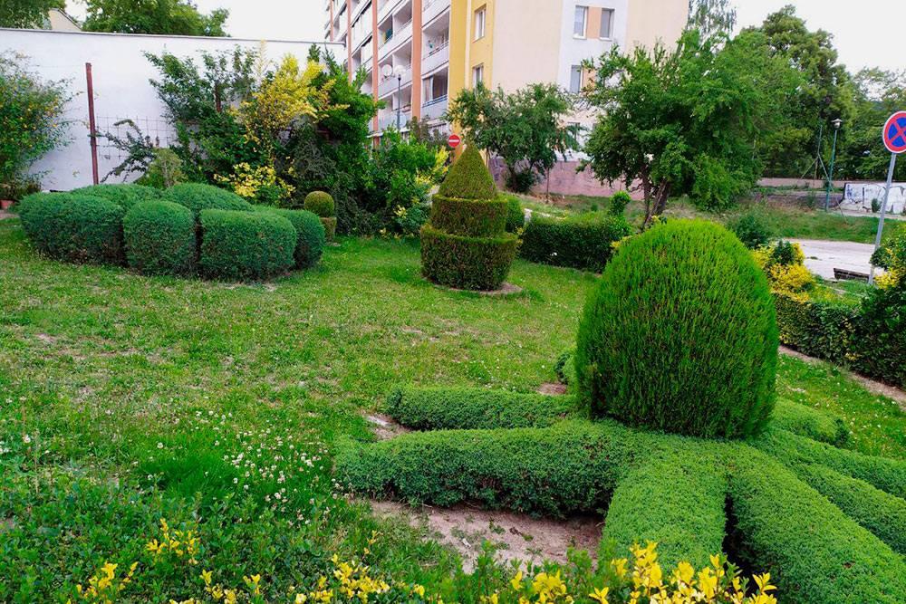 Двор дома с ухоженными растениями
