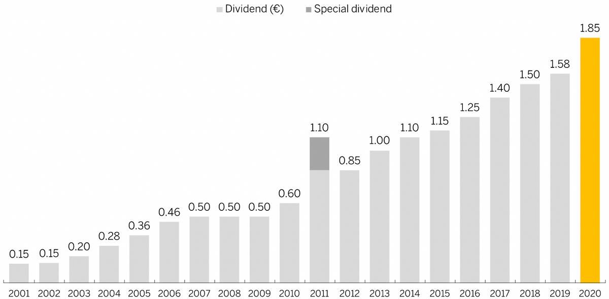 Сумма дивидендов на акцию SAP по годам в евро. Темно-серый — разовые выплаты. Источник: сайт SAP