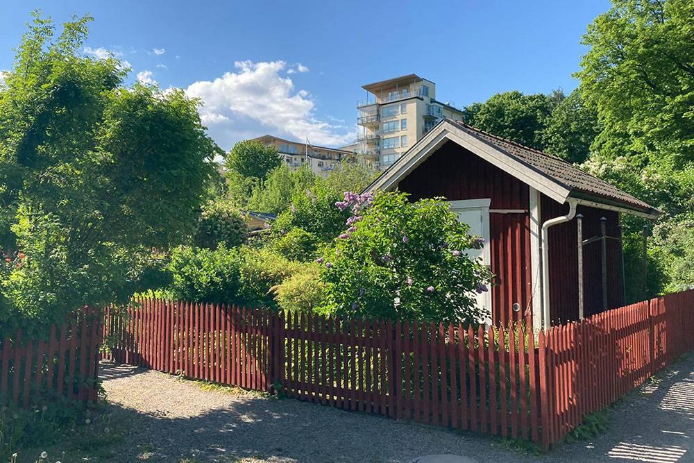 Такие летние домики расположены в нескольких районах Стокгольма — в том числе центральных. Здесь у людей маленькие участки, где они выращивают цветы, овощи или фрукты. Микросадоводство в центре города