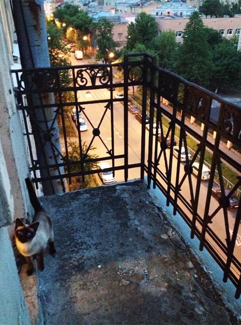 Тот самый балкон мечты. Такой классно иметь летом: кресло, столик, кофе — идеально