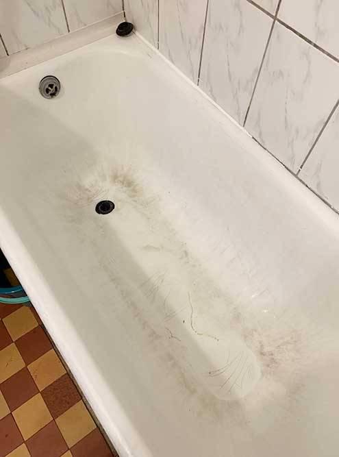 А на ванне были следы от когтей самоеда