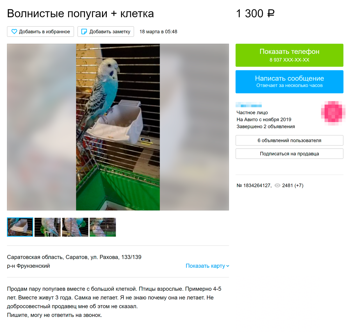 На «Авито» и подобных сайтах часто пристраивают ненужных попугайчиков. Отдают практически даром. Стоимость не покрывает даже расходы на клетку. Источник: avito.ru