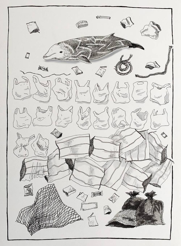 Погибший на Филиппинах кит-клюворыл и пластиковые предметы, найденные в его желудке: 18 пакетов-маек, 14 мешков дляриса, 8 банановых мешков, две веревки, 17 оберток, упаковка от чипсов, 6 мешков длямусора, сеть, нейлоновая упаковочная веревка. Источник: «Гринпис»