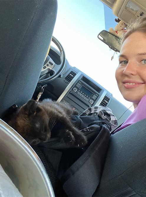 Наш новый питомец, котенок из Дагестана, спал рядом с нами всю дорогу до Москвы