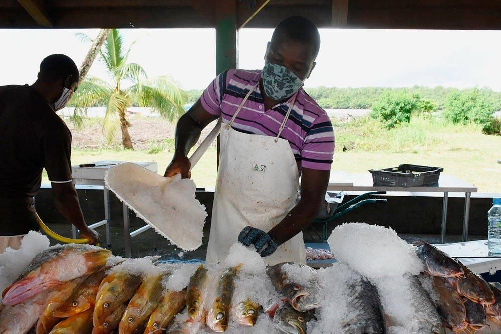 На рынке нет замороженной рыбы: есть только свежая, выложенная на лед
