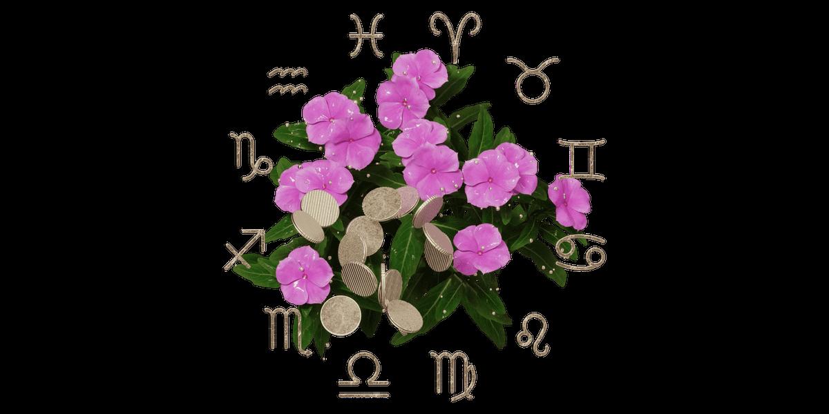 Финансово-цветочный гороскоп Т—Ж: узнайте, какая весна вас ждет