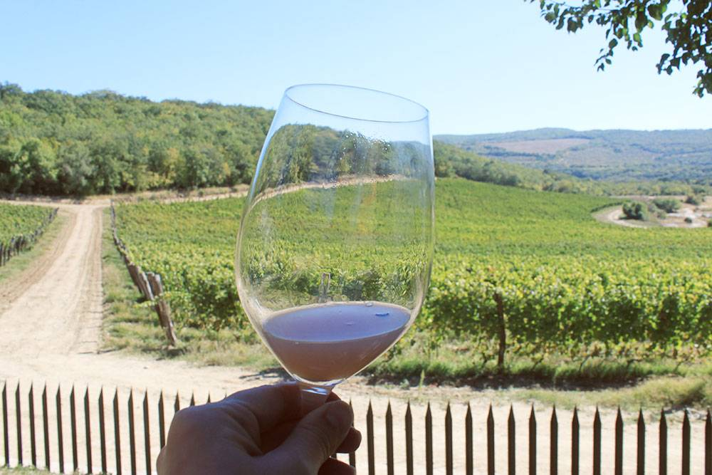Дегустировать вино интереснее всего там, где его сделали
