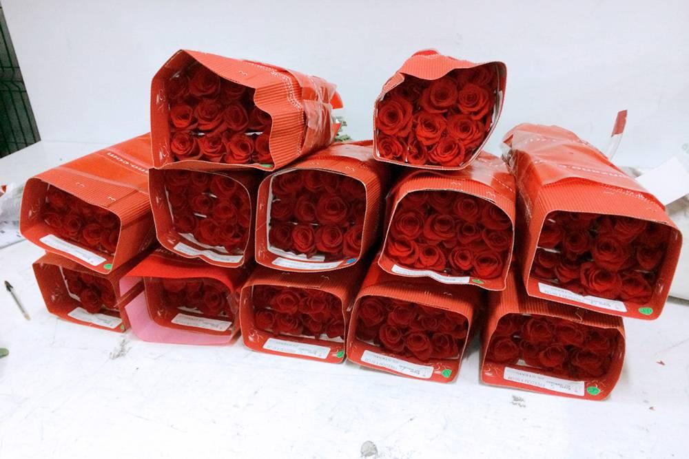 Розы из Эквадора упаковывали по 12 штук в одну тару из мягкой бумаги. Тара защищала от поломок стеблей и осыпания лепестков