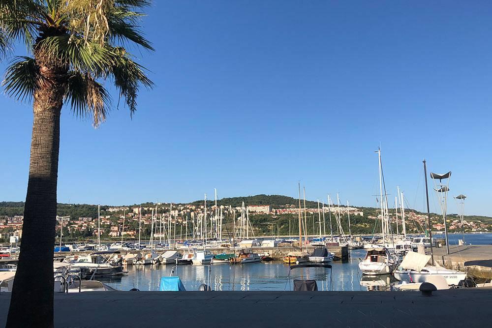На частные яхты можно посмотреть в Изоле. Если хотите увидеть крупный порт, поезжайте в столицу побережья Копер на Адриатике. Там сохранился небольшой исторический центр