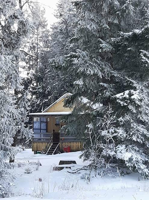 Наш дачный дом находится посреди леса