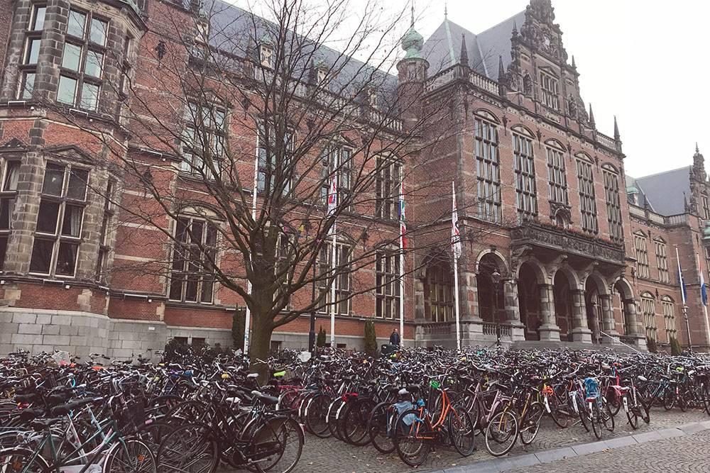 Гронингенский университет — один из самых крупных работодателей в городе