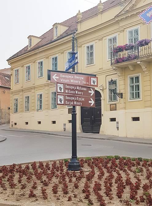 В городе на каждом шагу расставлены указатели направлений к винодельням