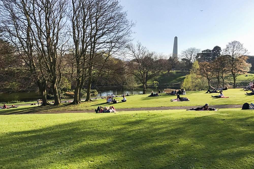 Феникс-парк в Дублине. Ирландцы стремятся взять все от редких теплых солнечных дней