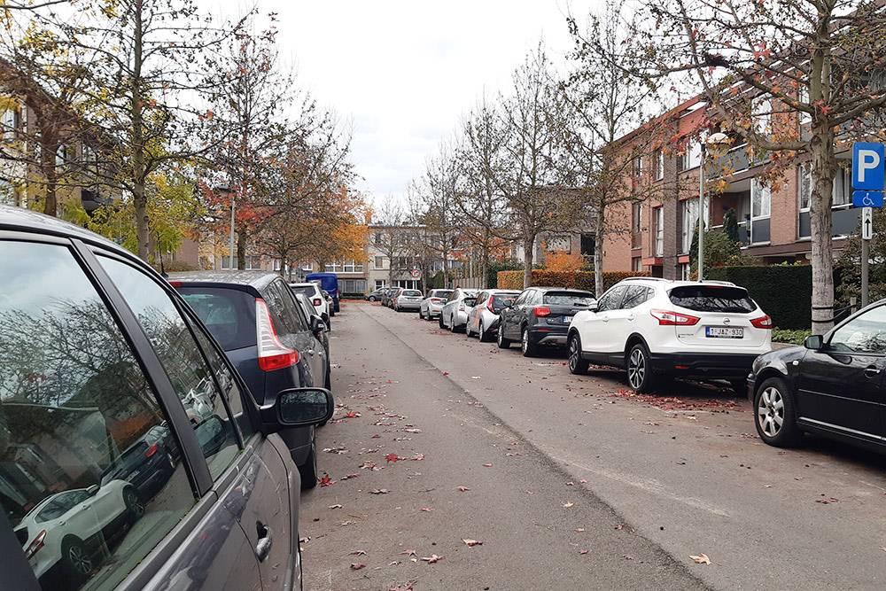 Парковка вдоль дороги внашем районе. Удома можно парковаться бесплатно, нодляэтого нужно получить специальное разрешение