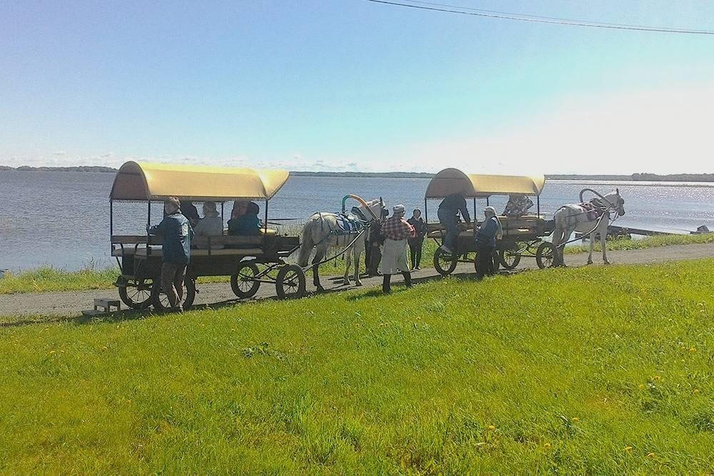 Конные брички — отличный способ осмотреть весь остров. Но летом 2020 года из-за коронавируса этот транспорт был недоступен