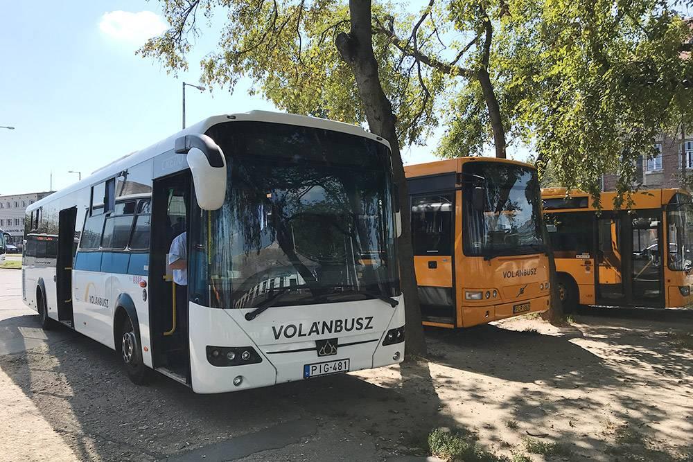 На коротких маршрутах чаще всего ездят желтые автобусы VolánBusz. В них сидения жесткие инеоткидываются. Аболее комфортабельные белые автобусы отправляются надлинные маршруты