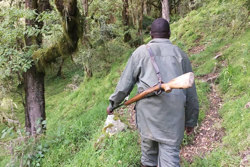 Мы были сдрузьями-танзанийцами, которые хорошо знают местность. Темнеменее группу сопровождал рейнджер — такположено позакону. У него есть ружье наслучай встреч сдикими животными. Говорят, впарке есть леопарды, ноихсовсем немного — шанс ихвстретить очень мал