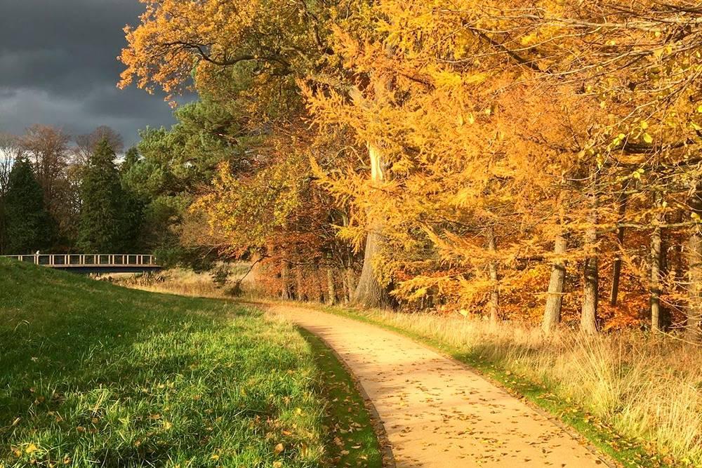 Шотландская осень