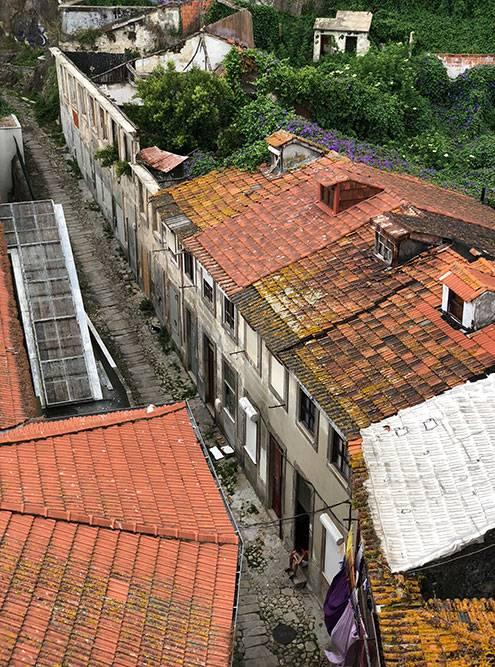Вид с моста на жилые домики. Бедность граничит с роскошными ресторанами и отелями