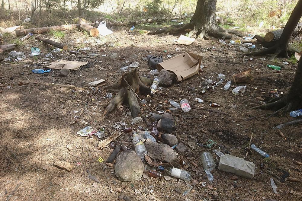 Не раз видела, как дети на природе кидают пластиковые пакеты и бутылки, а родители не обращают на это внимания. Потом по лесу летают бумажки и другой мусор