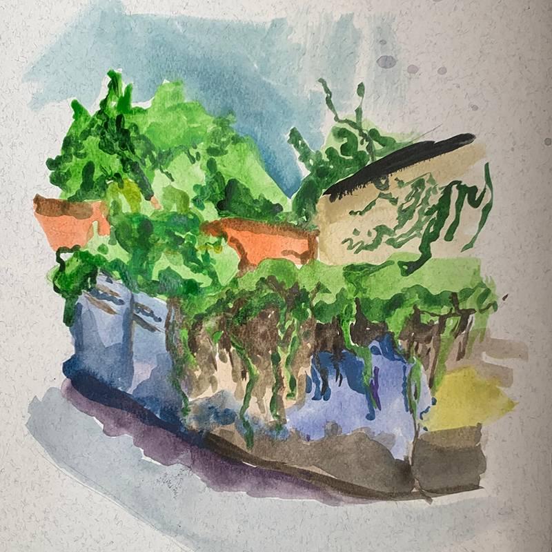 Увитые зеленью заборы — то что нужно для быстрой акварельной зарисовки