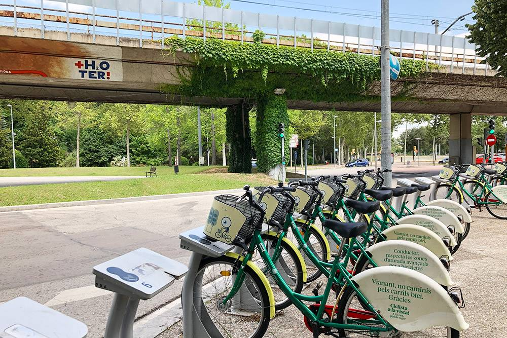 Велосипеды проката «Жироклета» на одной из остановок. На заднем колесе написано: «Пешеход, не ходи по велодорожкам. Спасибо!»