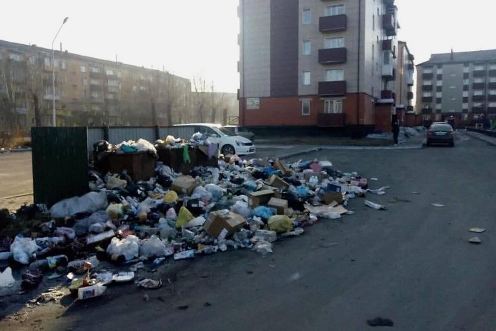 Все было, как у вас: мусор вывозился раз в неделю, в этой куче ночевали бездомные, собаки и кошки. К их компании не успели присоединиться только тараканы, потомучто было слишком холодно