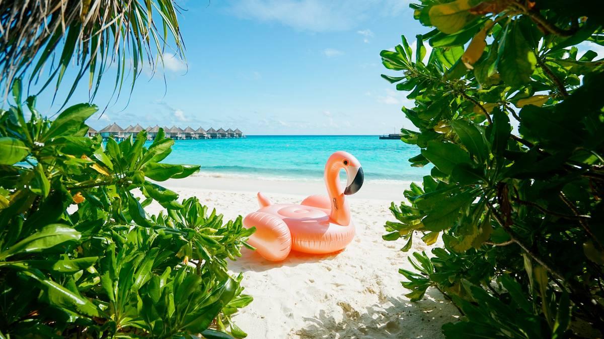Сколько стоит съездить на Мальдивы