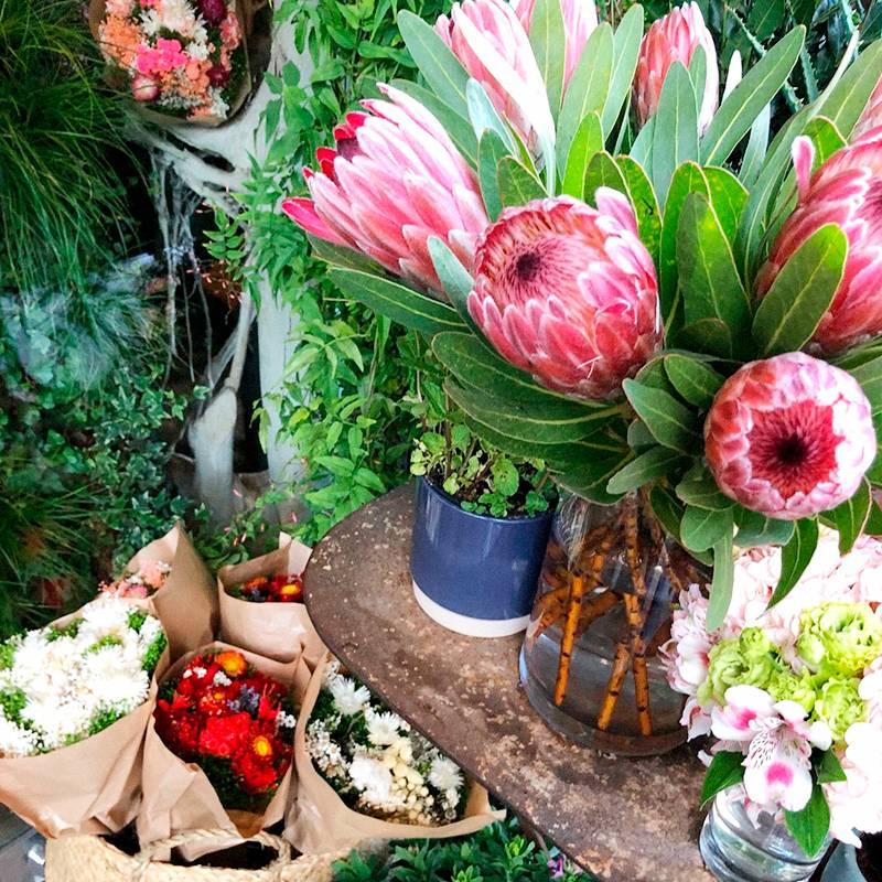 В Маре очень много маленьких цветочных магазинчиков, и все они очень симпатичные