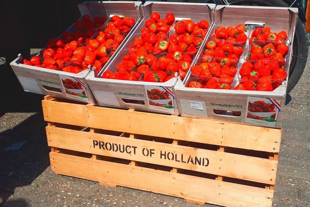 Голландцы очень гордятся своей клубникой. За коробку просят 10€