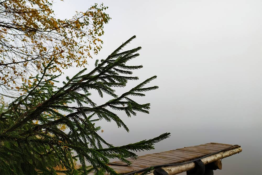 Вид на Чусовую с берега, где дача