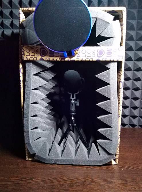 Звукоизолирующая будка. Внутри расположен диктофон настойке, в«пауке» исветрозащитой