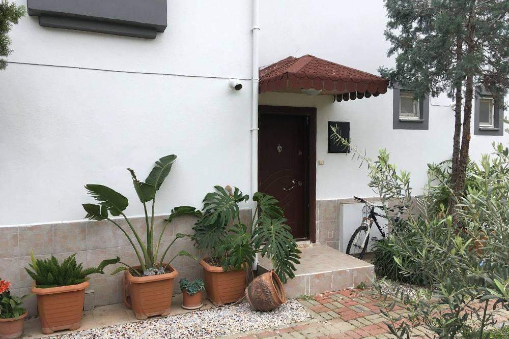 Вход в наш дом. Сбоку растет оливковое дерево, с которого мы каждый год собираем урожай