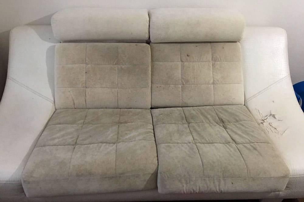 Однажды я чистил вот такой диван. Хозяин не помнил, откуда взялись самые черные пятна