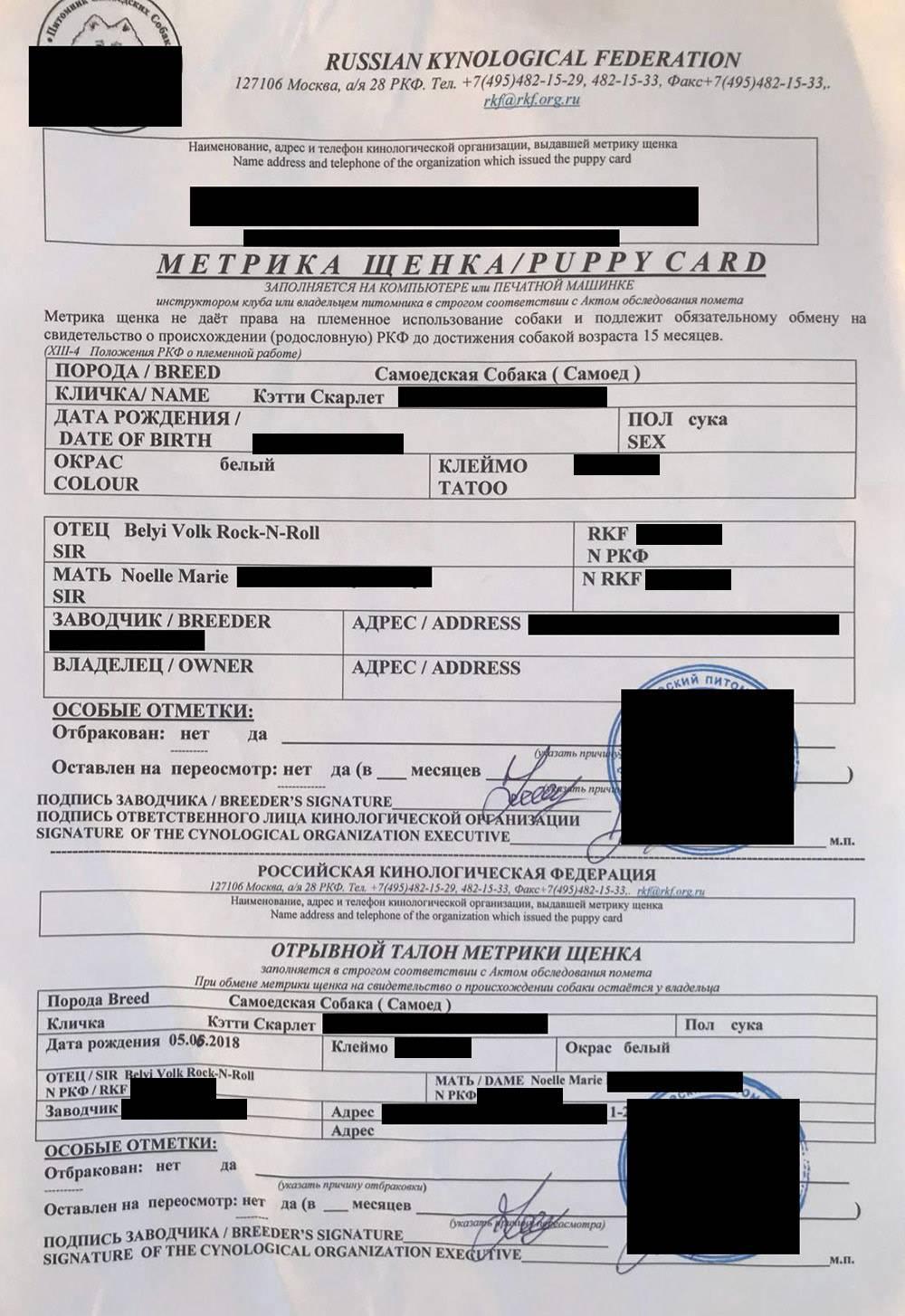 Без помощи питомника все документы на щенка, включая метрику, придется оформлять в РКФ самим