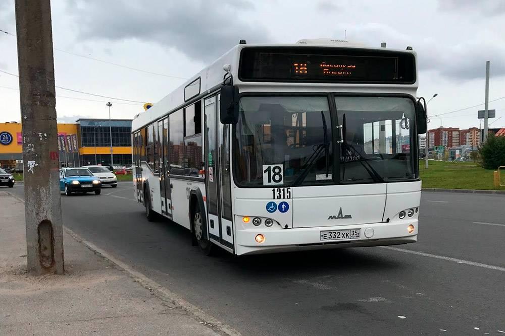 Обычный городской автобус. Есть еще гармошки, но их гораздо меньше