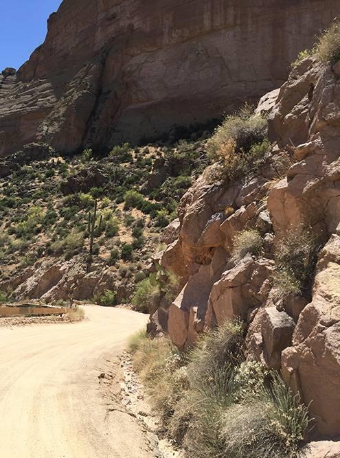 Однополосная грунтовая дорога извилистая, с крутыми поворотами, обрывами и гигантскими кактусами как из мультика. Местами она настолько узкая, что проедет только один автомобиль. Кое-где есть «карманы», чтобы можно было разъехаться