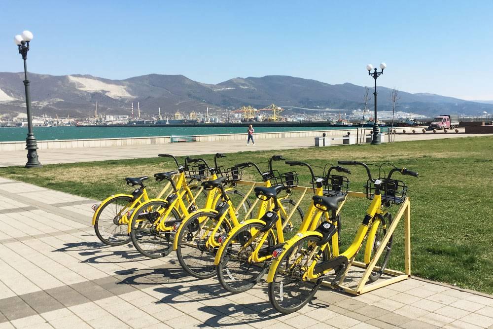 Велосипеды в аренду можно взять прямо на набережной