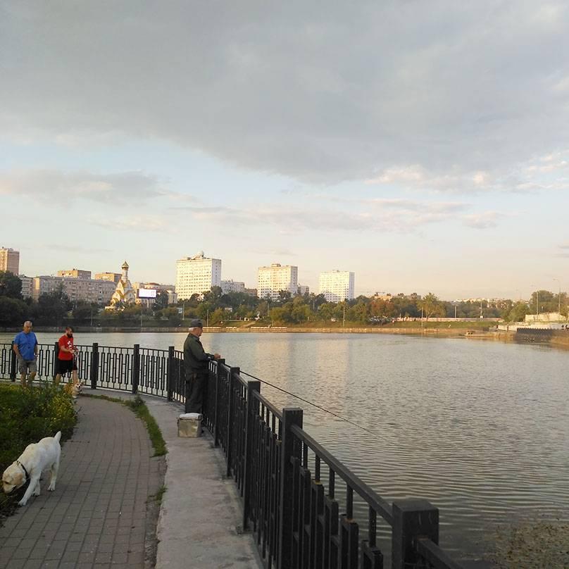 Не знаю, безопасноли есть московскую рыбу, но рыбаки на набережной стоят постоянно