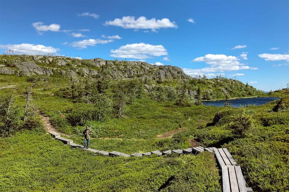Туристические маршруты — это проложенные тропы, на большей части которых есть деревянные настилы