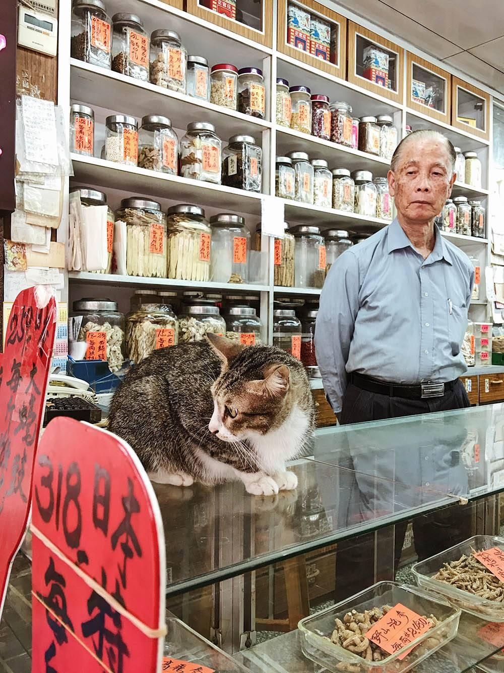 Так выглядит лавка, где можно купить ингредиенты для китайского лечебного чая, если не заказываете готовую смесь в аптеке, а варите сами